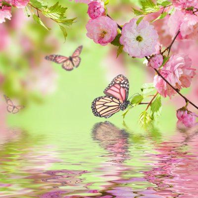 春色 ピンク