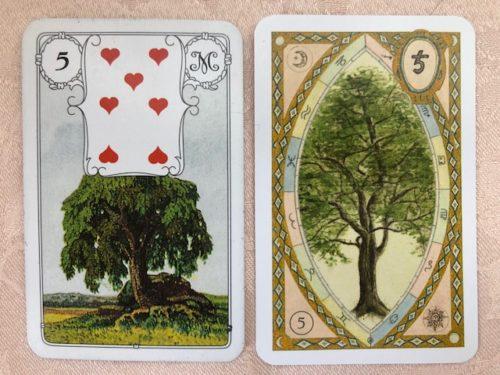 ルノルマンカード 5 木