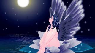 満月の浄化 妖精 イメージ